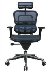 Ergohuman Chair