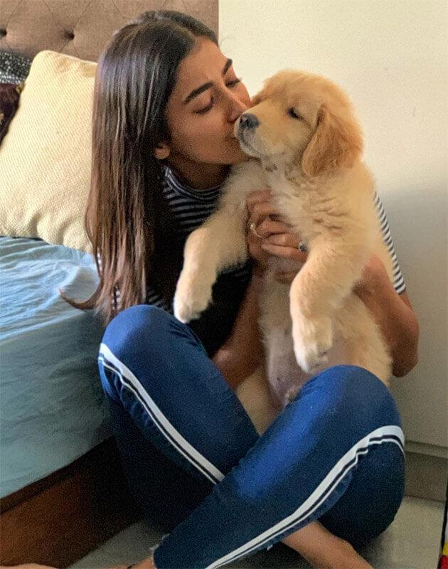 Pooja Hegde's dog