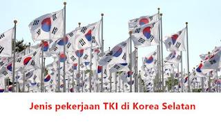 jenis pekerjaan dan perusahaan tempat kerja TKI di korea selatan