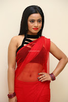 Aasma Syed in Red Saree Sleeveless Black Choli Spicy Pics ~  Exclusive Celebrities Galleries 105.jpg