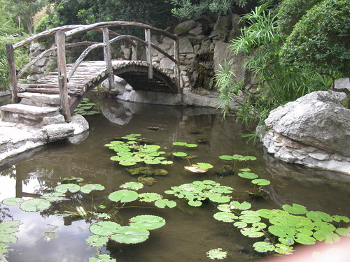 Date Nights At Half The Price Zilker Botanical Garden