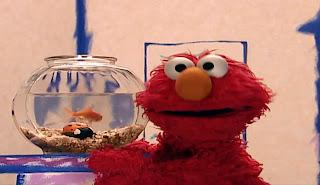 Elmo's World Bugs Dorothy's Question
