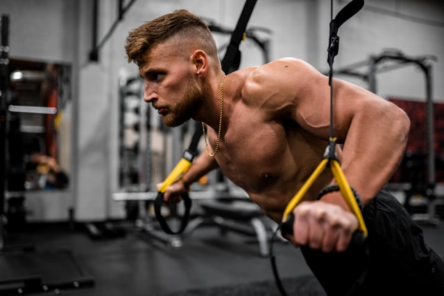 Resistance Bands, gym, full-body workout, exercises, muscles , bodybuilding