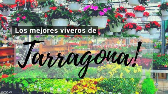 Comprar plantas online en Tarragona