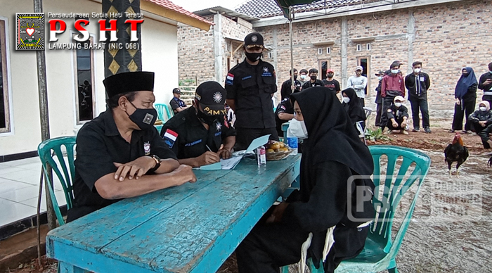 Tes Ayam Siswa PSHT Ranting Way Tenong Cabang Lampung Bara