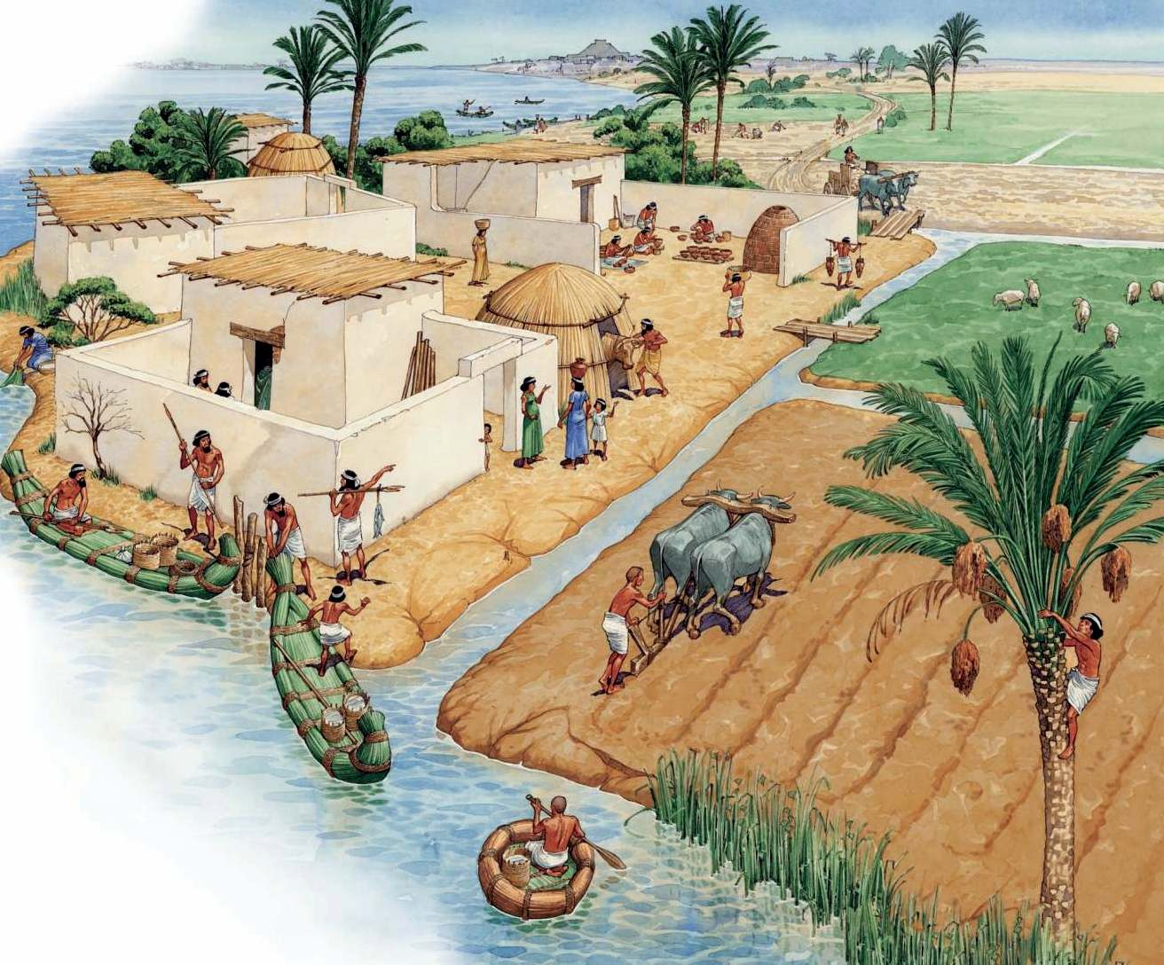 egypt and mesopatamia Egypt and mesopotamia's economy, political societies, agriculture, geography, culture, and religion varies in more ways than one may realize in the views of egyptian and mesopotamian geography, they're at variance from each other.