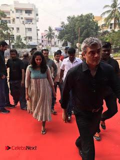 Tamil Film Industry Jallikattu Support Protest of Jallikattu  007.jpg