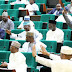 Reps move to block entry of foreign herdsmen into Nigeria