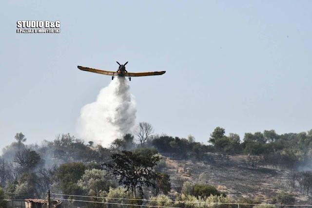 Σε ύφεση η πυρκαγιά στο Κουτσοπόδι Αργολίδας