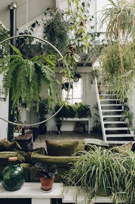 Jardim no inverno