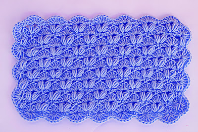 2 - Crochet IMAGEN Punto de abanico combinado con punto puff