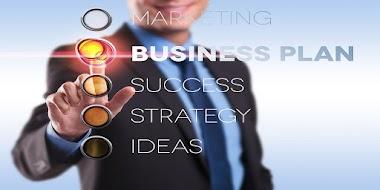 BUSINESS LIFE PROFILE MATRIX for MENTORS