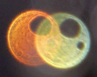 orange orb and yellow orb