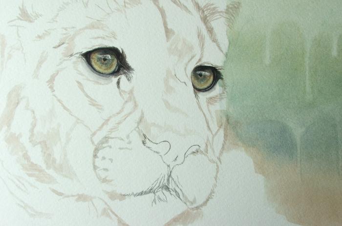 020f906cc7716 WildArtCapture | Julia Ruffles: mountain lion progress - eye detailing