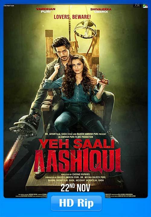 Yeh Saali Aashiqui 2019 Hindi 720p WEB-DL ESub x264 | 480p 300MB | 100MB HEVC