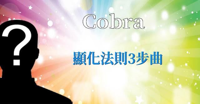 柯博拉(Cobra)的版本:顯化法則3步曲