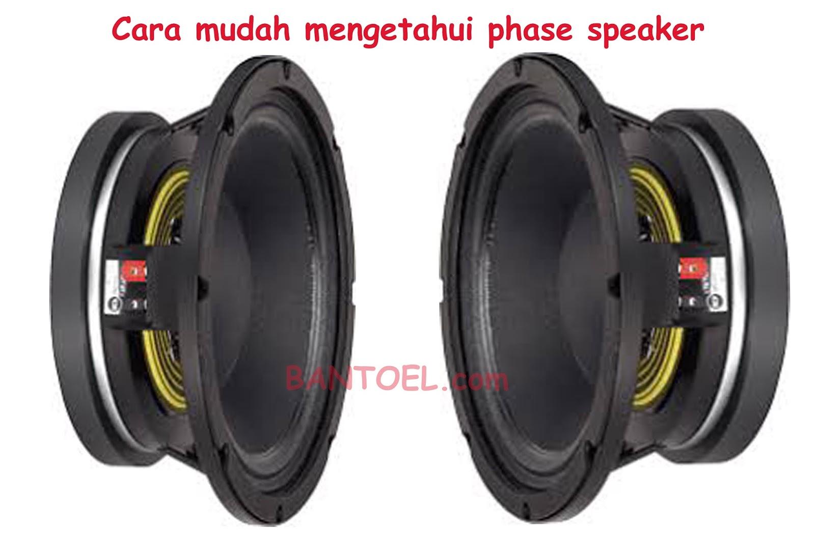 Cara Mudah Mengetahui Phase Speaker Agar Tidak Cempreng