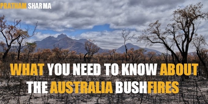 What you need to know about the Australia bushfires