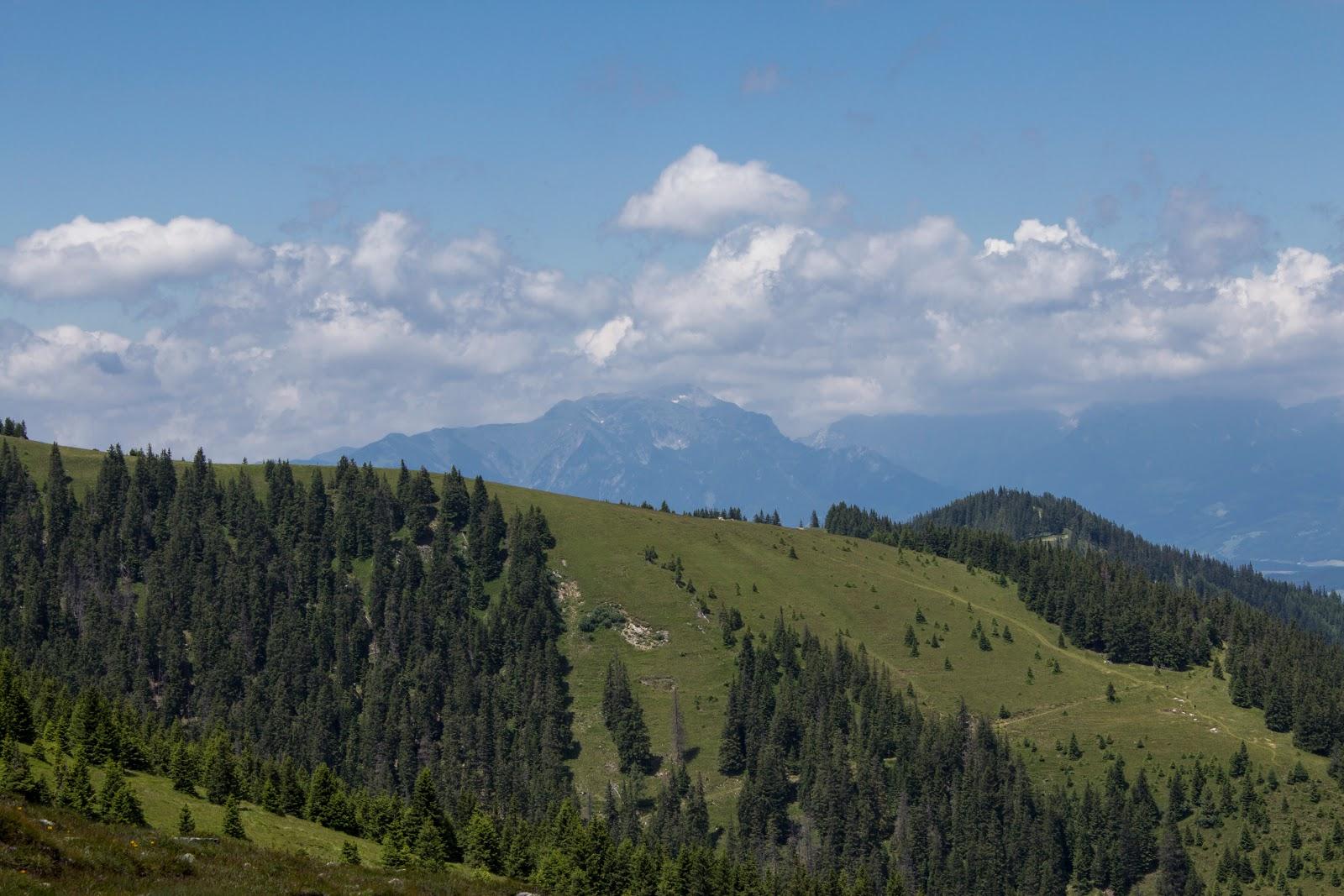 Wanderung auf den Lärchkogel auf der Gleinalpe - Steiermark - Österreich