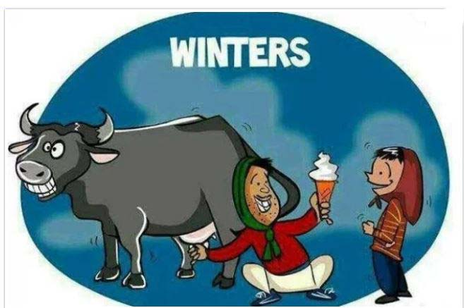 Funny Winter Season Photos