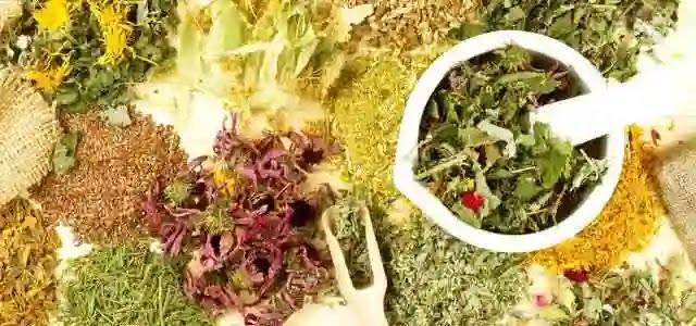 اعشاب التخسيس من العطار