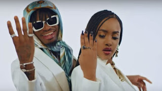 DOWNLOAD VIDEO | Tanasha X Diamond Platnumz – Gere  mp4
