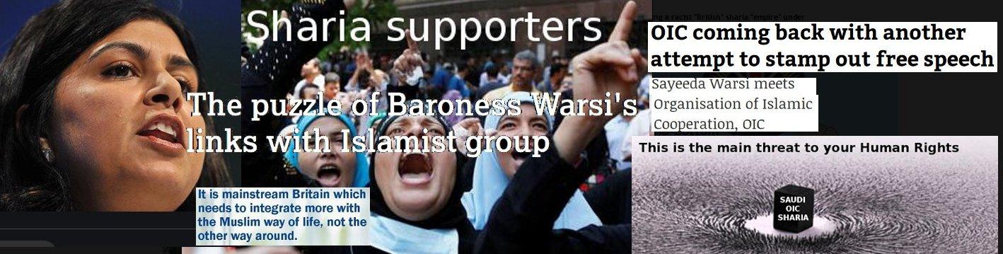 "Sayeeda Warsi, UK's biggest ""islamophobia"" shouting mouth against Human Rights, is for OIC sharia"
