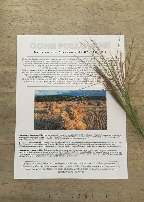 Come Follow Me study guide printed with wheat.