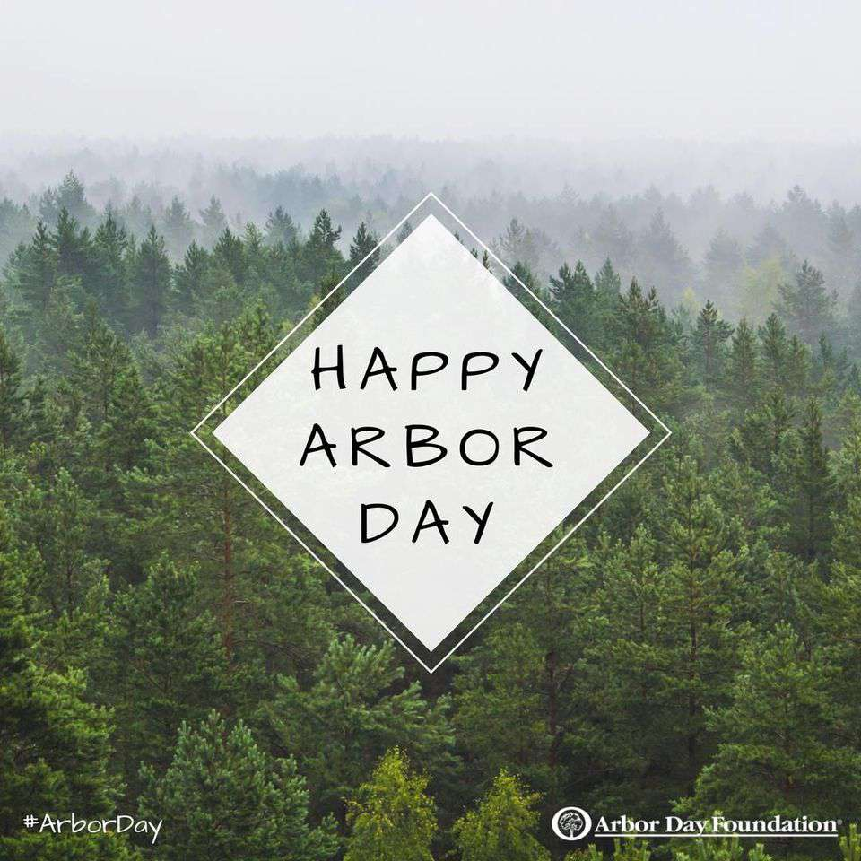 National Arbor Day Wishes Beautiful Image