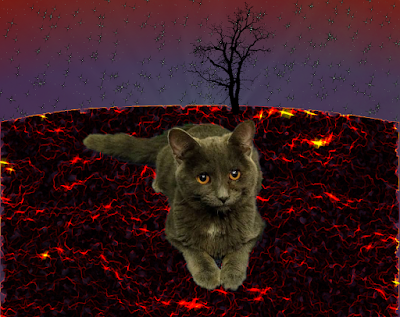 Kitten on a lava planet