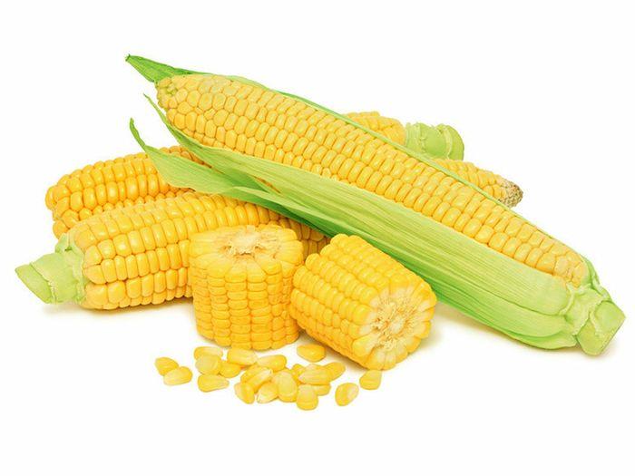 jagung lebih sering digunakan sebagai bahan pangan karena banyak mengandung