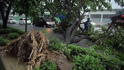 BPBD Mengingatkan Warga untuk Waspada Saat Cuaca Ekstrem
