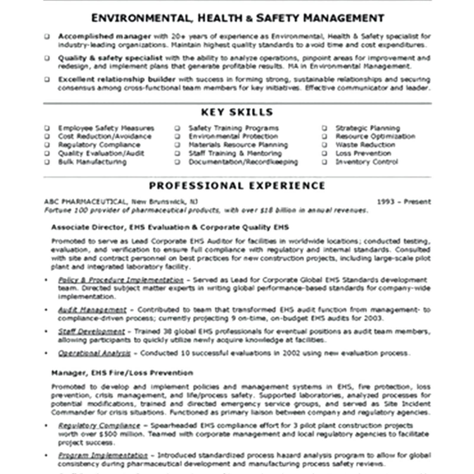 safety officer resume pdf 2019 safety officer resume doc safety officer resume samples safety officer resume objective safety officer resume format pdf safety officer resume fresher safety officer resume in india