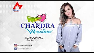 Lirik Lagu Chandra Rosalina - Buaya Cintaku