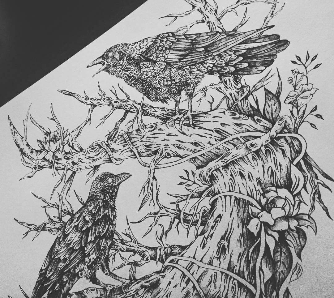 05-Ravens-Kate-Burgau-Ink-Illustrations-of-Nature-and-Animals-www-designstack-co
