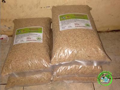 ABI MARYAM, Pidie, Aceh   Pembeli Benih Padi TRISAKTI 75 HST Panen.  5 Kg atau 1 Bungkus