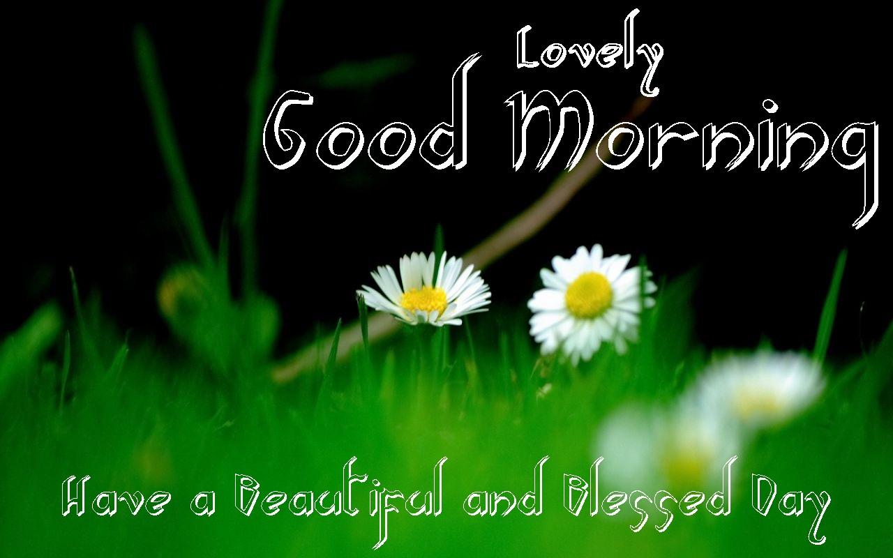 Cute Baby Gud Morning Wallpaper Best Gud Morning Wishes Gud Morning Hd Ecards Festival