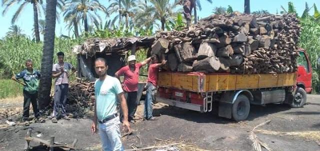لمخالفة الإشتراطات البيئية إزالة ١١ من مكامير الفحم بمركز ومدينة كفر الدوار .