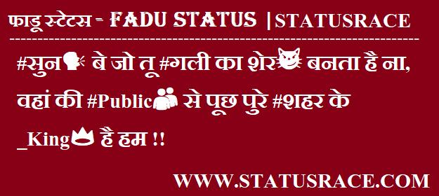 500+ Fadu Status in Hindi 2020 - 2020 फाडू स्टेटस इन हिन्दी - StatusRace