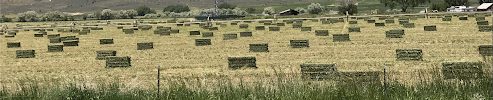 ©2019 Peter Miesler - bales of hay