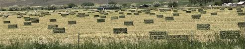 ©2019 Peter Miesler - bales of hay