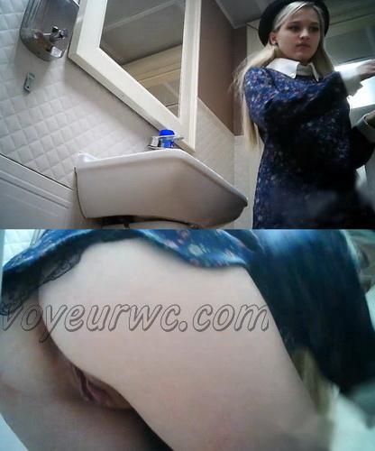 WC 2303-2306 (Hidden Camera in Female Restaurant Toilet)