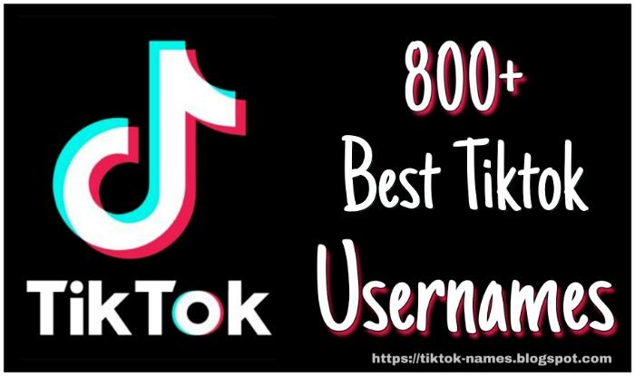 Tiktok Names 800 Best Tiktok Username Ideas Tiktok Names Tiktok Names 40 aesthetic username ideas   aesthetic usernames 2020. best tiktok username ideas tiktok names