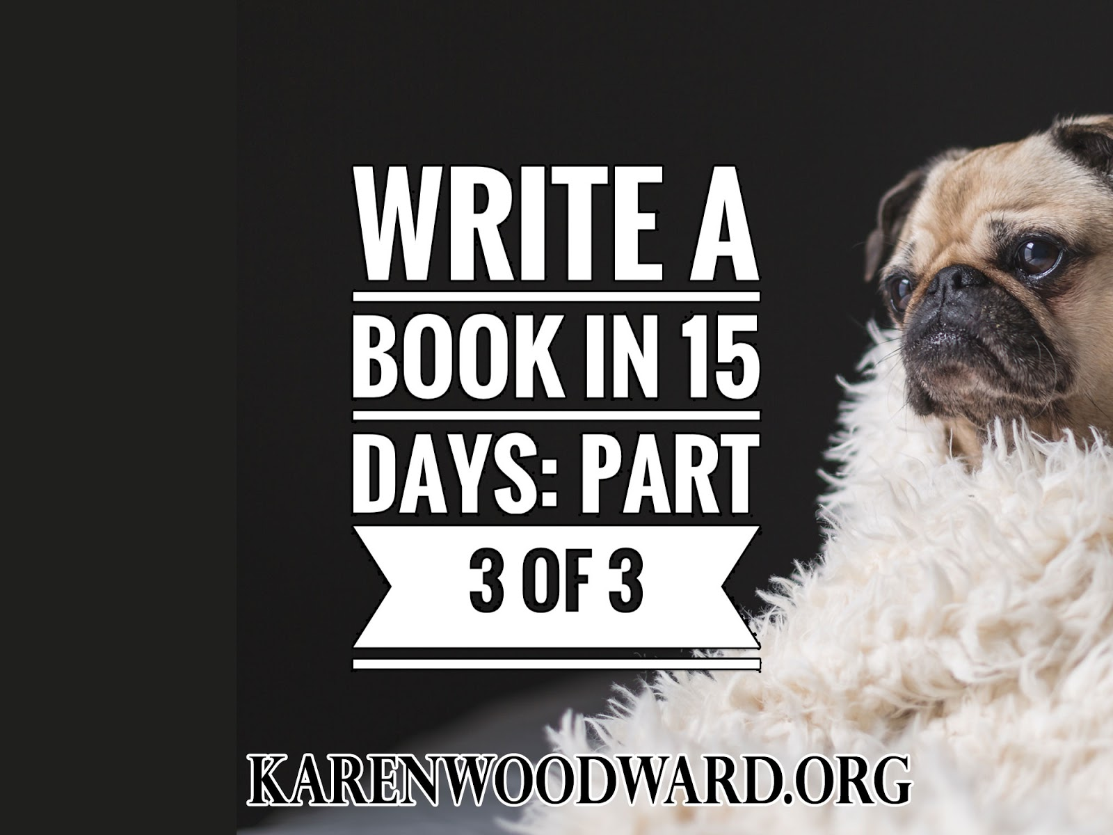 Karen woodward write a book in 15 days part 3 of 3 for How to write a craft book