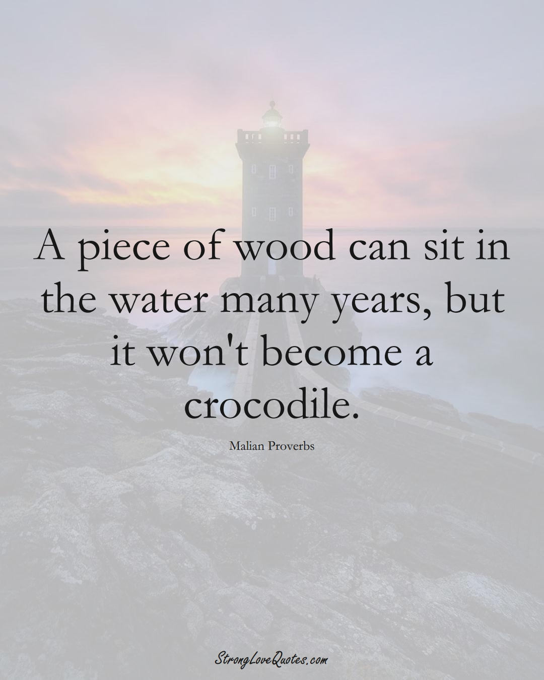 A piece of wood can sit in the water many years, but it won't become a crocodile. (Malian Sayings);  #AfricanSayings