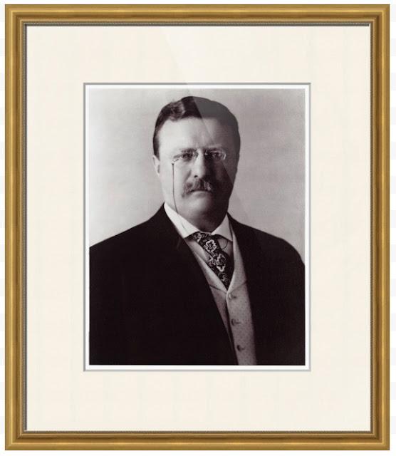 teddy roosevelt blue bloods portrait