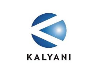 international strategy adopted by kalyani group