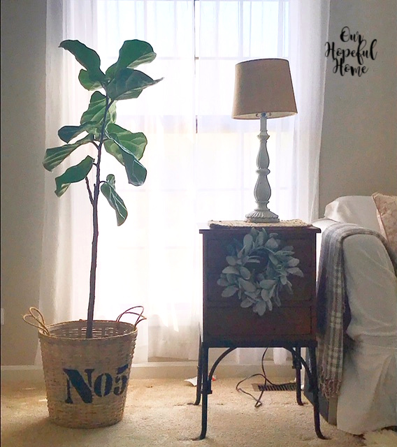 fiddle leaf fig tree basket side table lamp