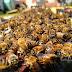 أسباب هروب النحل من الخلايا