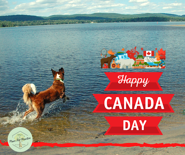 It's our day, eh: Happy Canada Day from Paws For Reaction